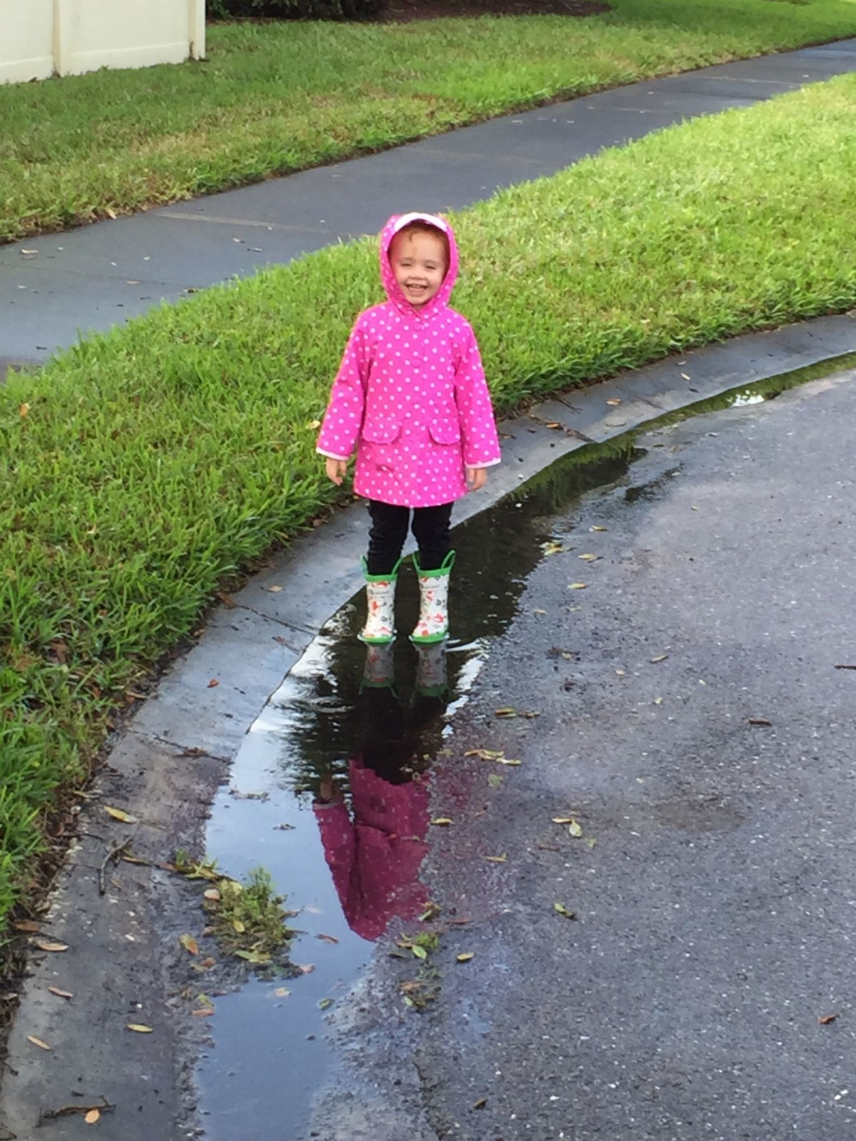 Splashing in the puddles [VIDEO]